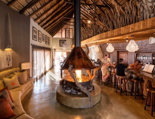 Impodimo Game Lodge – Madikwe Game Reserve (North West)